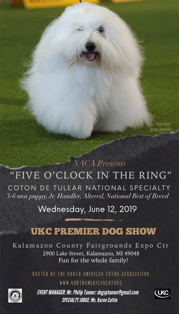 NACA Presents Five O'Clock in the Ring. Coton de Tulear National Specialty. 3-6 months puppy, Jr. Handler, Altered, National Best of Breed. Wednesday, June 12 2019 - UKC Premier Dog Show - Kalamazoo County Fairgrounds Expo Center.